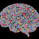 deep-neural-network